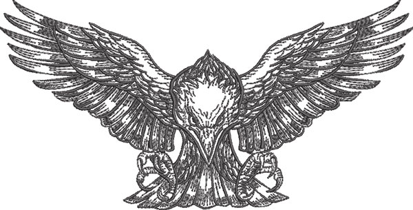 graphic eagle landing embroidery design