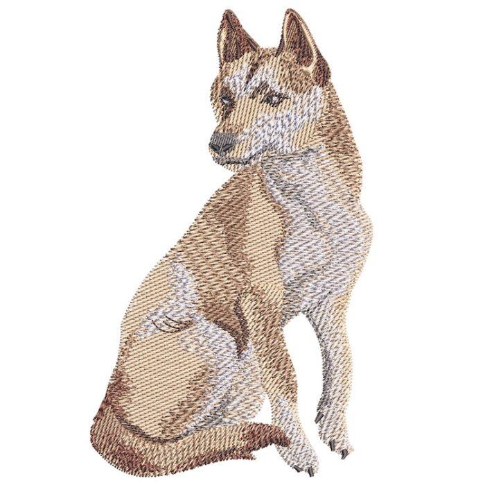 Outback Dingo design