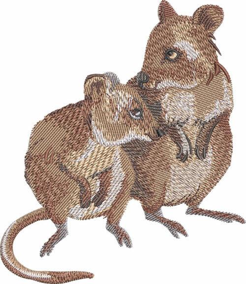 Quokkas embroidery design