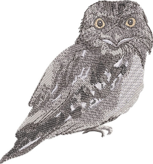 frogmouth embroidery design