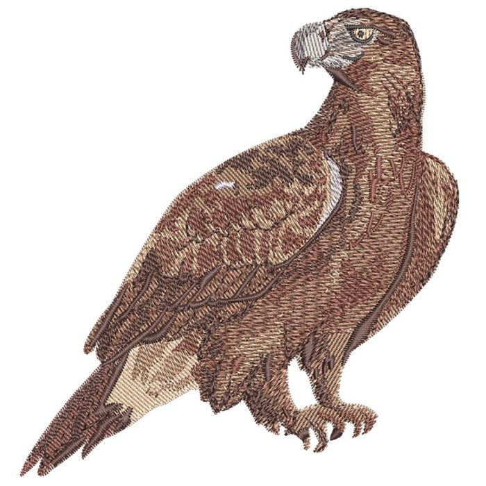 Outback Wedge-Tailed Eagle embroidery design