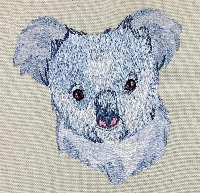 Outback Koala Head