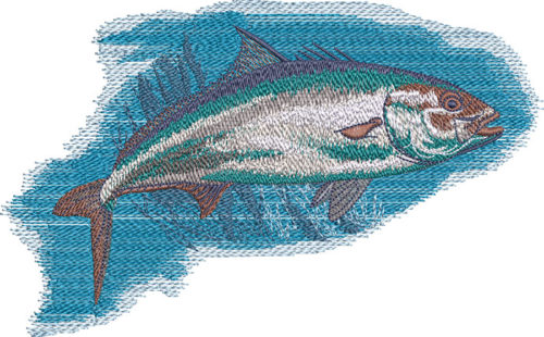 amberjack embroidery design